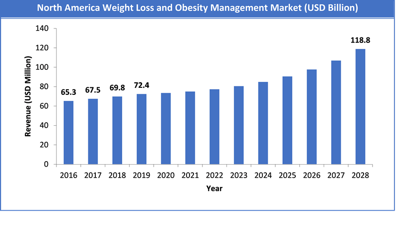 Global Weight Loss and Obesity Management Market Size