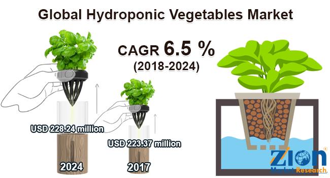 Global Hydroponic Vegetables Market