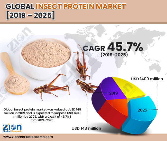 Insect Protein Market