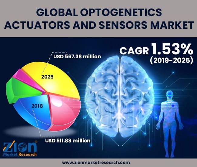 Optogenetics Actuators and Sensors Maket